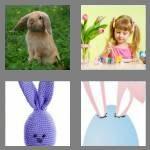 cheats-4-pics-1-word-5-letters-bunny-4288883