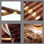 cheats-4-pics-1-word-5-letters-cigar-2573734