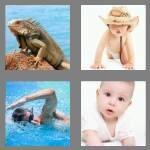 cheats-4-pics-1-word-5-letters-crawl-2156278