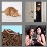 cheats-4-pics-1-word-5-letters-creep-5367026