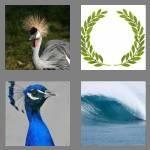 cheats-4-pics-1-word-5-letters-crest-7755844
