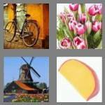 cheats-4-pics-1-word-5-letters-dutch-9471873