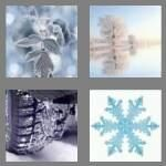 cheats-4-pics-1-word-5-letters-frost-3653554