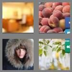 cheats-4-pics-1-word-5-letters-fuzzy-3247550