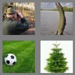 cheats-4-pics-1-word-5-letters-green-4753948