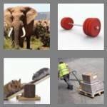 cheats-4-pics-1-word-5-letters-heavy-4885287