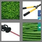 cheats-4-pics-1-word-5-letters-hedge-4315818