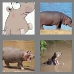 cheats-4-pics-1-word-5-letters-hippo-2619658