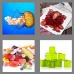 cheats-4-pics-1-word-5-letters-jelly-5273864