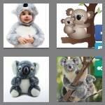 cheats-4-pics-1-word-5-letters-koala-8109663
