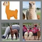 cheats-4-pics-1-word-5-letters-llama-2359857