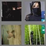 cheats-4-pics-1-word-5-letters-ninja-3348021