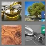 cheats-4-pics-1-word-5-letters-olive-8476103