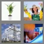cheats-4-pics-1-word-5-letters-plant-9323501