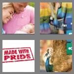 cheats-4-pics-1-word-5-letters-proud-9461243