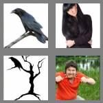 cheats-4-pics-1-word-5-letters-raven-8612007