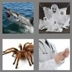 cheats-4-pics-1-word-5-letters-scary-5962845