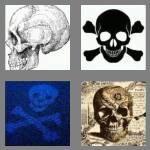 cheats-4-pics-1-word-5-letters-skull-9084420