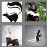 cheats-4-pics-1-word-5-letters-skunk-7192581