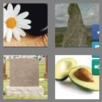 cheats-4-pics-1-word-5-letters-stone-6933872