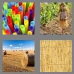 cheats-4-pics-1-word-5-letters-straw-3876816