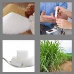 cheats-4-pics-1-word-5-letters-sugar-7847978