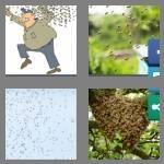 cheats-4-pics-1-word-5-letters-swarm-9152822