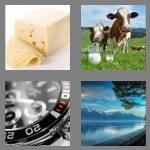 cheats-4-pics-1-word-5-letters-swiss-4859885