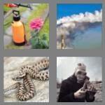 cheats-4-pics-1-word-5-letters-toxic-2008786