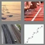 cheats-4-pics-1-word-5-letters-track-7016868