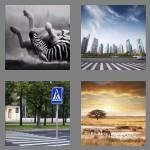 cheats-4-pics-1-word-5-letters-zebra-4242996