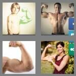 cheats-4-pics-1-word-6-letters-biceps-2033042