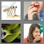 cheats-4-pics-1-word-6-letters-biters-7896426