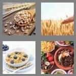 cheats-4-pics-1-word-6-letters-cereal-2460509
