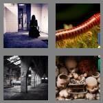 cheats-4-pics-1-word-6-letters-creepy-5270999