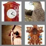 cheats-4-pics-1-word-6-letters-cuckoo-6131039