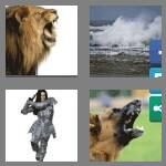 cheats-4-pics-1-word-6-letters-fierce-8158044