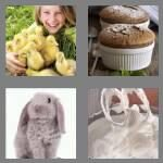 cheats-4-pics-1-word-6-letters-fluffy-1296977