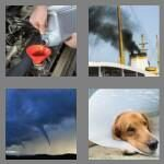 cheats-4-pics-1-word-6-letters-funnel-8049026
