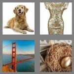 cheats-4-pics-1-word-6-letters-golden-5880326