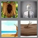 cheats-4-pics-1-word-6-letters-hollow-8471497
