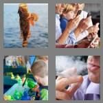 cheats-4-pics-1-word-6-letters-hooked-7065336