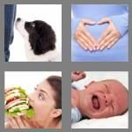 cheats-4-pics-1-word-6-letters-hunger-4761095