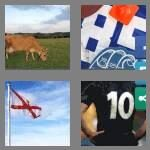cheats-4-pics-1-word-6-letters-jersey-1083230