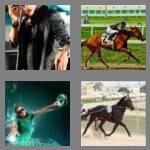 cheats-4-pics-1-word-6-letters-jockey-5310439
