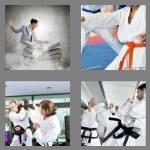 cheats-4-pics-1-word-6-letters-karate-9833636