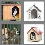cheats-4-pics-1-word-6-letters-kennel-1409024
