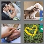 cheats-4-pics-1-word-6-letters-loving-8853465