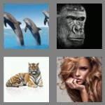 cheats-4-pics-1-word-6-letters-mammal-7135237