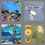 cheats-4-pics-1-word-6-letters-marine-8767430